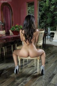 Sophia Leone,stockings mania